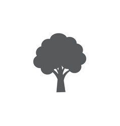 tree icon on white background vector image