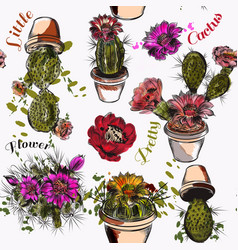 Wallpaper pattern with hand drawn cactuses vector