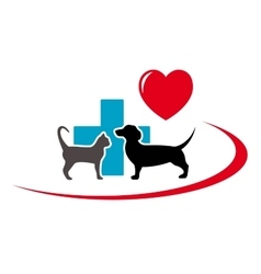 dachshund dog and cat on veterinary icon vector image vector image