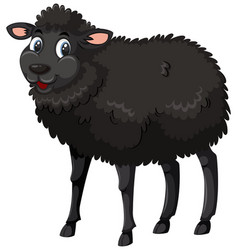 A black sheep on white background vector