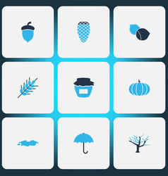 Autumn icons colored set with wheat pine cone vector