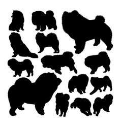 chow chow dog animal silhouettes vector image