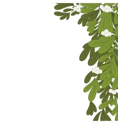Christmas border mistletoe with white flowers vector