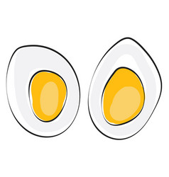 Cut slices a hard boiled egg or color vector