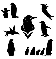 penguinSet vector image