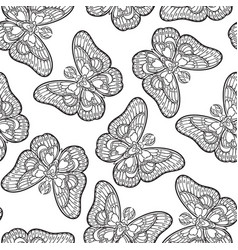 seamless pattern with butterflies stylized moth vector image
