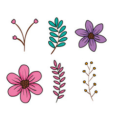 Set flowers and branch icons vector