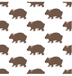 Wombat seamless pattern vector
