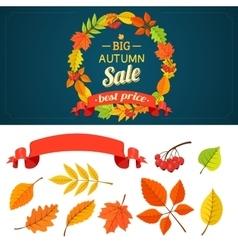 Autumn background and design elements vector image