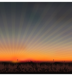 sunset grassland vector image vector image