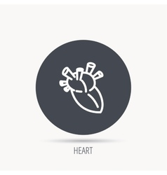 Heart icon Human organ sign Transplantation vector image
