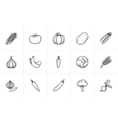 agriculture food sketch icon set vector image