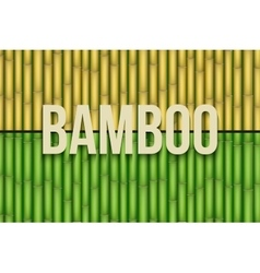 Bamboo background set vector image