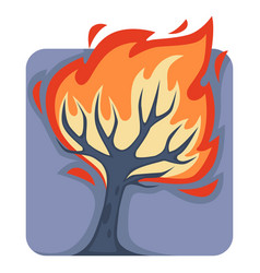 dangerous wild fire that burns down tall tree vector image