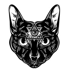 hand drawn cat character design vector image