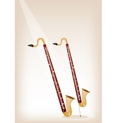 A Musical Bass Clarinet on Brown Stage Background vector image