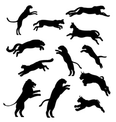 SetOfJumpingCats vector image