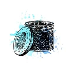 Watercolor Hand drawn jar with black caviar vector image