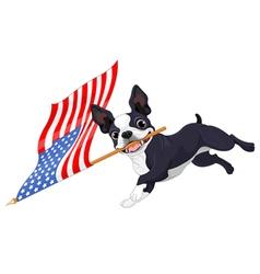 Boston Terrier Running Flag vector image