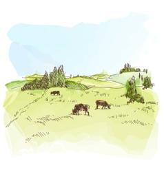 Watercolor landscape with cows vector image vector image