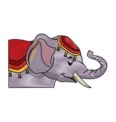 Circus elephant as acrobat animal standing trick vector