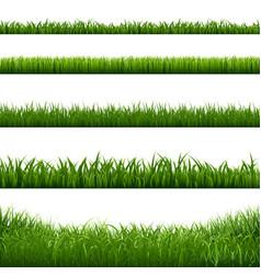 Grass frame borders vector