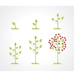 Growing tree icon set vector