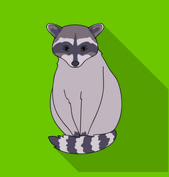 Raccoonanimals single icon in flat style vector