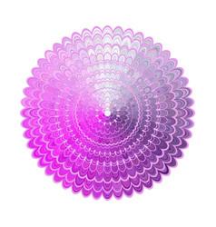 abstract floral mandala design - digital art vector image vector image