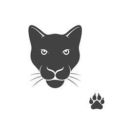 Panther with paw print vector image vector image
