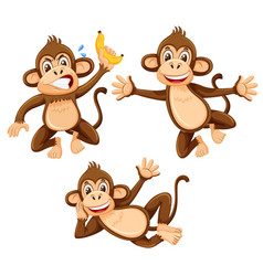 a set of monkey on white background vector image