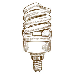 Engraving of lightbulb vector