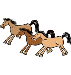 Horses or mustangs cartoon vector