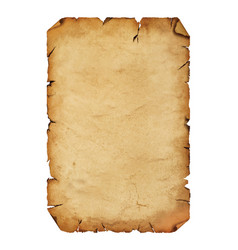Old antique paper parchment scroll over white vector