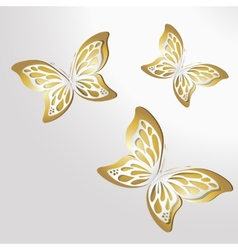 Paper Lace butterfly on gold background vector