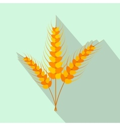 Three stalks of ripe barley flat icon vector