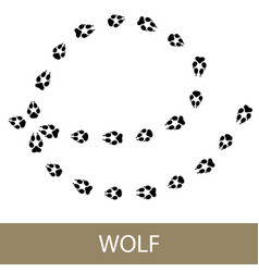 traces of animal walf vector image