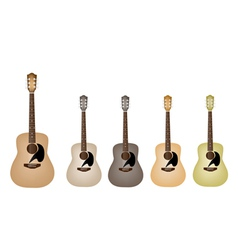 Beautiful Vintage Acoustic Guitars vector image vector image