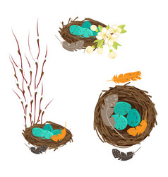 birds nests with eggs set vector image
