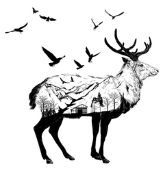 Hand drawn Deer for your design wildlife concept vector image