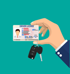 car driver man license identification card vector image