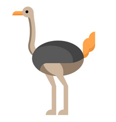 Ostrich flat vector