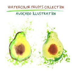 set of watercolor avocado vector image
