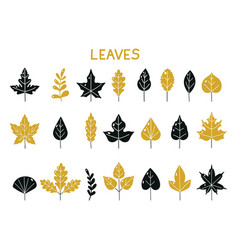 Set silhouettes autumn leaves autumn leaf vector