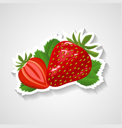 strawberry sticker cartoon vector image