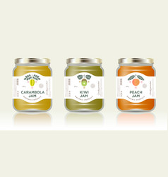 three packaging carambola kiwi peach jam vector image