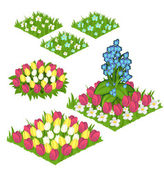 Several unusually beautiful flower lawns vector