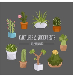Cactuses and succulents icon set Houseplants vector image vector image