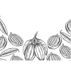 Cocoa bean tree design template vector