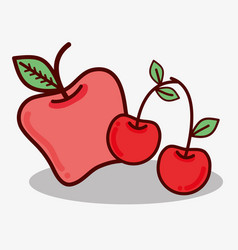 Delicious apple and cherry fruit icon vector